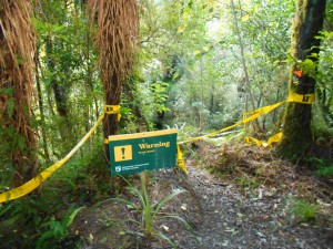 A Track Closed sign in the Eastern Tararau Range.